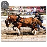 Welsh Pony (Sect. C) Puzzle