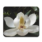 Aiken Mousepad: Magnolia on Grace