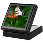 .swallowtail on candy lily. Keepsake Box