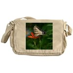 .swallowtail on candy lily. Messenger Bag