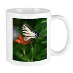 .swallowtail on candy lily. Mug