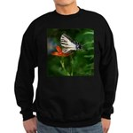 .swallowtail on candy lily. Sweatshirt (dark)