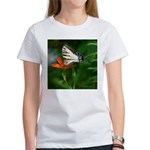 .swallowtail on candy lily. Women's T-Shirt