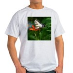 .swallowtail on candy lily. Light T-Shirt