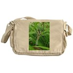 .garden spider. Messenger Bag