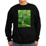 .garden spider. Sweatshirt (dark)
