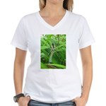 .garden spider. Women's V-Neck T-Shirt