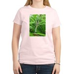 .garden spider. Women's Light T-Shirt