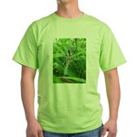 .garden spider. Green T-Shirt