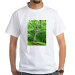 .garden spider. White T-Shirt