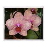 .phalenopsis duo. Throw Blanket