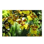 .yellow oncidium. Postcards (Package of 8)