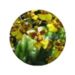 .yellow oncidium. 3.5