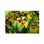.yellow oncidium. Rectangle Magnet (100 pack)