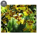 .yellow oncidium. Puzzle