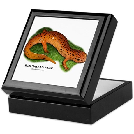 Red Salamander Keepsake Box