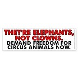 They're elephants Bumper Sticker