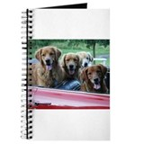 Golden Retriever Summer Drive Journal