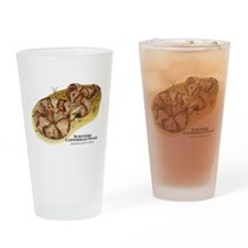 Northern Copperhead Snake Drinking Glass