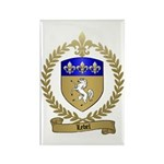 LEBEL Family Crest Rectangle Magnet (10 pack)