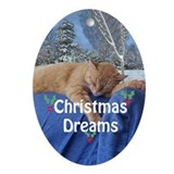 tabby dreams Ornament (Oval)