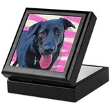 Carmen the Black Lab Keepsake Box