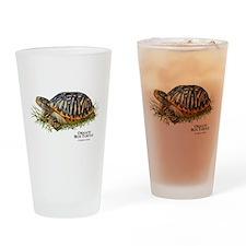 Ornate Box Turtle Drinking Glass