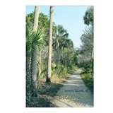 Edisto Postcards: Path at Botany Bay (Pkg of 8)