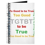 OYOOS Too Good to be True design Journal