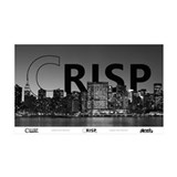 "Crisp NYC 38.5"" x 24.5"" Wall Peel"