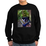Humor Jumper Sweater