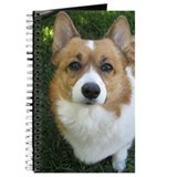 Beautiful Corgi Journal