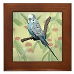 Blue Parakeet or Budgie Framed Tile