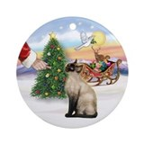 Treat for a Siamese cat (Choc) Ornament (Round)