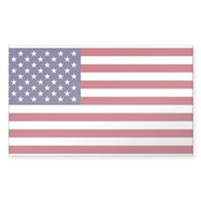 Unique Usa Decal