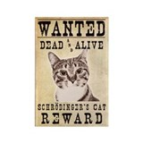 Wanted: Schrodinger's Cat Magnet