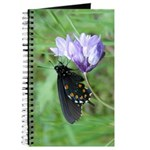 Butterfly & Brodaiea Journal