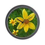 .coreopsis. Wall Clock