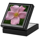 .light pink rose. Keepsake Box