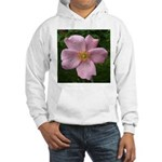 .light pink rose. Hooded Sweatshirt