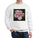 .light pink rose. Sweatshirt