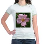.light pink rose. Jr. Ringer T-Shirt