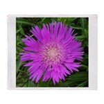 .stoke's aster. Throw Blanket