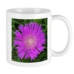 .stoke's aster. Mug