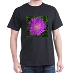 .stoke's aster. Dark T-Shirt