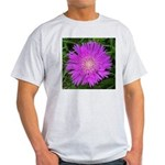 .stoke's aster. Light T-Shirt