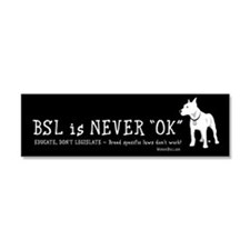 BSL is NEVER OK Car Magnet 10 x 3