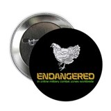 Endangered Chicken 2.25&quot; Button