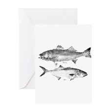 Striper Bass and Bluefish Greeting Card