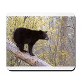 Funny Black bears Mousepad